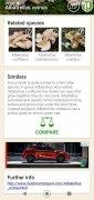 Mushrooms App image 12 Thumbnail