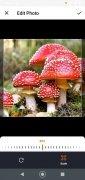 Mushrooms App image 4 Thumbnail