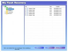 My Flash Recovery immagine 3 Thumbnail