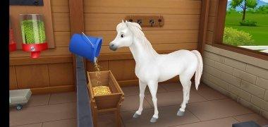 My Horse Stories imagen 5 Thumbnail