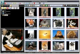 MyQuickView image 1 Thumbnail