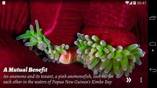 National Geographic Muzei imagem 11 Thumbnail