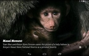 National Geographic Muzei image 5 Thumbnail