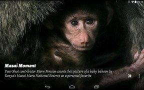 National Geographic Muzei imagem 5 Thumbnail