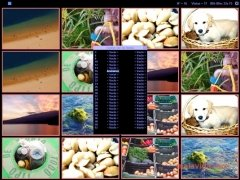 Nemory imagen 2 Thumbnail