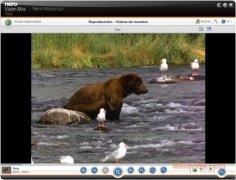 Nero Vision Xtra  10.6.10800 Español imagen 4