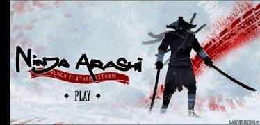 Ninja Arashi imagen 1 Thumbnail