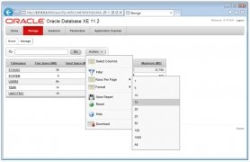 Oracle  DataBase 11g Release 2 imagen 2