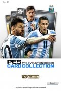 PES CARD COLLECTION bild 1 Thumbnail
