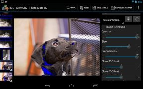 Photo Mate image 3 Thumbnail