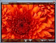 PhotoLikr image 1 Thumbnail