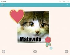 Pic Collage imagen 1 Thumbnail