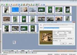 PicaLoader image 2 Thumbnail