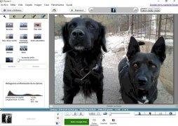 Picasa imagem 2 Thumbnail