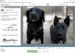 Picasa imagen 3 Thumbnail