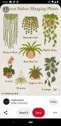 Pinterest imagem 7 Thumbnail