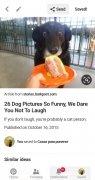 Pinterest Lite 画像 7 Thumbnail