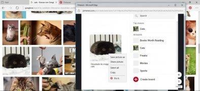 Pinterest Save Button imagem 6 Thumbnail
