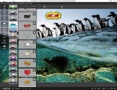 Pixlr immagine 1 Thumbnail