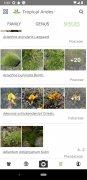 PlantNet imagen 7 Thumbnail