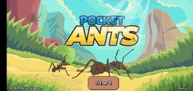 Pocket Ants imagem 2 Thumbnail