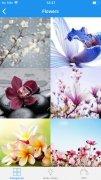 Popular Stickers immagine 10 Thumbnail
