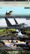 ProTube bild 4 Thumbnail