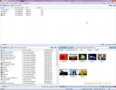 Q-Dir immagine 3 Thumbnail
