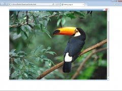 Rapid Gallery Creator imagen 4 Thumbnail