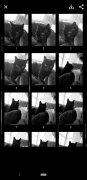 Selfissimo! imagen 6 Thumbnail