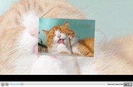 SmartSHOW 3D imagem 10 Thumbnail