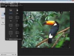 Snapseed imagen 4 Thumbnail
