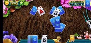 Solitales imagen 1 Thumbnail
