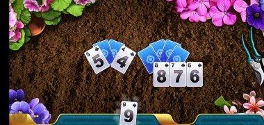 Solitales imagen 2 Thumbnail