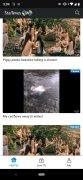 StarTimes ON imagem 10 Thumbnail