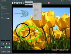 STOIK Imagic image 3 Thumbnail