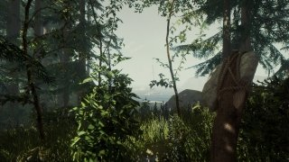 The Forest imagen 4 Thumbnail