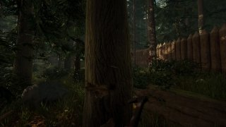 The Forest image 7 Thumbnail