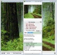 TinyPic imagen 4 Thumbnail