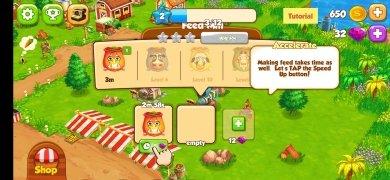 Top Farm immagine 2 Thumbnail