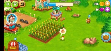 Top Farm image 4 Thumbnail