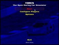 Torcs bild 6 Thumbnail