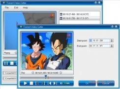 Torrent Video Cutter immagine 2 Thumbnail