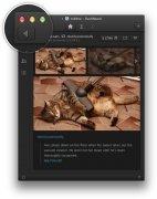 Tublme immagine 5 Thumbnail