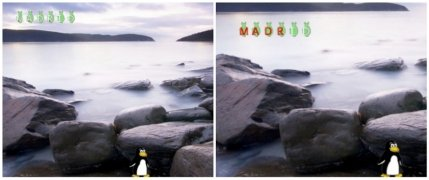 Tux Typing imagen 4 Thumbnail