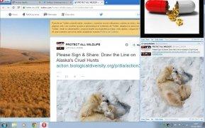 Twittalert bild 2 Thumbnail
