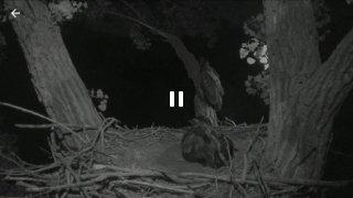 Ustream imagen 5 Thumbnail