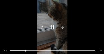 Viddit imagem 3 Thumbnail