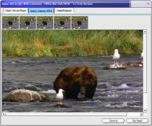 Video-AVI to GIF/JPEG Converter image 2 Thumbnail