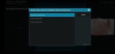 VideoDevil image 5 Thumbnail